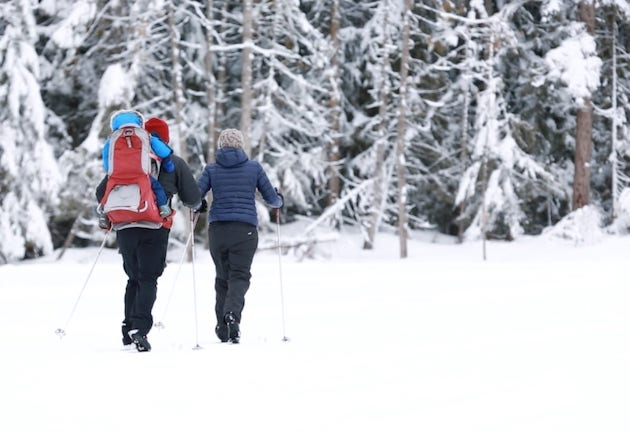 5 Family-Friendly Activities To Enjoy In The Shuswap This Winter